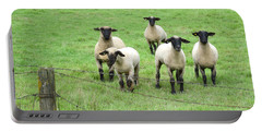 Curious Sheep Portable Battery Charger