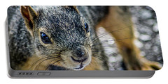 Portable Battery Charger featuring the photograph Curious Squirrel by Joann Copeland-Paul