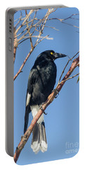 Currawong Portable Battery Charger by Werner Padarin