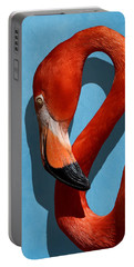 Curves, A Head - A Flamingo Portrait Portable Battery Charger
