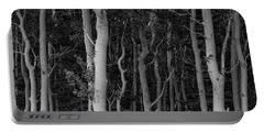 Portable Battery Charger featuring the photograph Curves Of A Forest by James BO Insogna