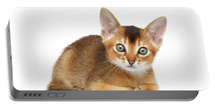 Cute Abyssinian Kitty Funny Lying On Isolated White Background Portable Battery Charger