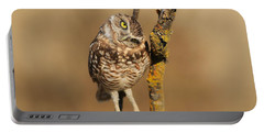 Cute Burrowing Owl Portable Battery Charger