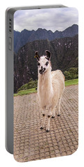 Cute Llama Posing For Picture Portable Battery Charger