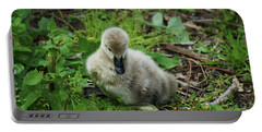 Cygnet Portable Battery Charger