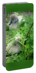 Cygnets V Portable Battery Charger