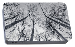 Portable Battery Charger featuring the photograph Cypress Abstract by Andy Crawford