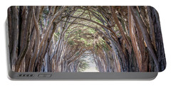 Portable Battery Charger featuring the photograph Cypress Embrace by Everet Regal