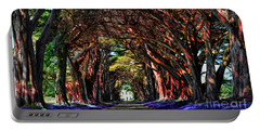 Cypress Tree Tunnel Portable Battery Charger