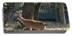 Portable Battery Charger featuring the photograph D8b6336 8 Point Buck At Our Home Ca by Ed Cooper Photography