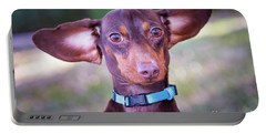 Dachshund Ears Up Portable Battery Charger by Stephanie Hayes