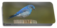 Daddy Bluebird Guarding Nest Portable Battery Charger