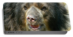 Daddy Cisco The Andean Bear Portable Battery Charger