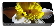 Portable Battery Charger featuring the photograph Daffodil 2 by Rose Santuci-Sofranko