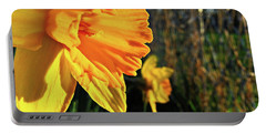 Portable Battery Charger featuring the photograph Daffodil Evening by Robert Knight
