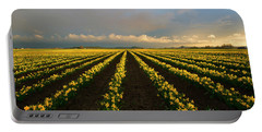 Portable Battery Charger featuring the photograph Daffodil Storm by Mike Dawson