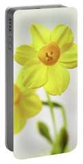 Daffodil Strong Portable Battery Charger