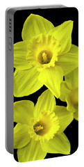 Portable Battery Charger featuring the photograph Daffodils by Christina Rollo