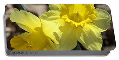 Portable Battery Charger featuring the photograph Daffodils In Spring by Sheila Brown