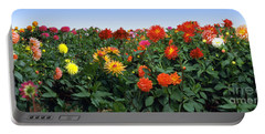Dahlia Flower Panorama Portable Battery Charger