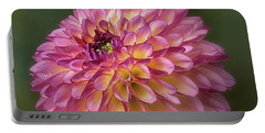 Dahlia 'foxy Lady' Portable Battery Charger