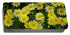 Daisies Portable Battery Charger by Catherine Gagne