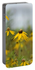 Portable Battery Charger featuring the photograph Daisies In The Mist by Maria Urso