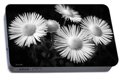 Portable Battery Charger featuring the photograph Daisy Flowers Black And White by Christina Rollo