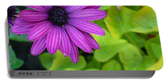 Daisy Pop Portable Battery Charger