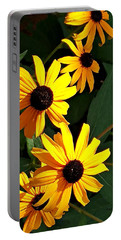 Daisy Row Portable Battery Charger