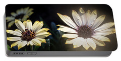 Daisydrops Portable Battery Charger