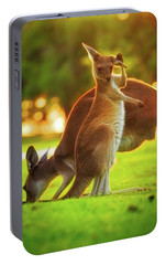 Portable Battery Charger featuring the photograph Damn Flies, Yanchep National Park by Dave Catley