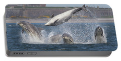 Dance Of The Dolphins Portable Battery Charger