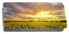 Portable Battery Charger featuring the photograph Dances With The Daffodils by Ryan Manuel