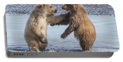 Dancing Bears Portable Battery Charger