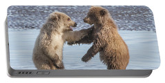 Portable Battery Charger featuring the photograph Dancing Bears by Chris Scroggins