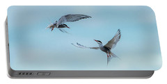 Dancing Terns Portable Battery Charger