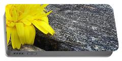 Dandelion Flower Portable Battery Charger by Lori Seaman