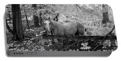 Dappled Face Horse II Portable Battery Charger