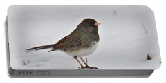 Dark-eyed Junco 1217 Portable Battery Charger by Michael Peychich