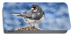 Portable Battery Charger featuring the photograph Dark-eyed Junco by Debbie Stahre