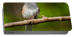 Dark Eyed Junco Perched On A Branch Portable Battery Charger