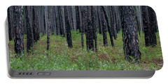 Dark Forest Portable Battery Charger