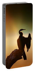 Darter Bird With Misty Sunrise Portable Battery Charger