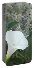 Datura Portable Battery Charger