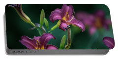 Day Lily Portable Battery Charger by David Bearden