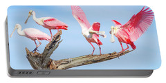 Day Of The Spoonbill  Portable Battery Charger