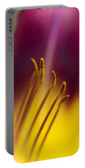 Daylily Abstract Portable Battery Charger by Kathy Clark