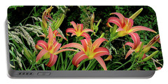 Daylily Grouping Portable Battery Charger by Shirley Heyn