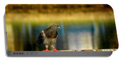 Daytona Beach Pigeon Portable Battery Charger
